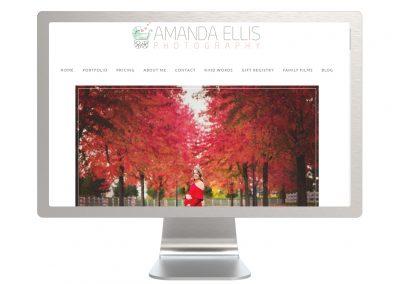 Amanda Ellis Photography